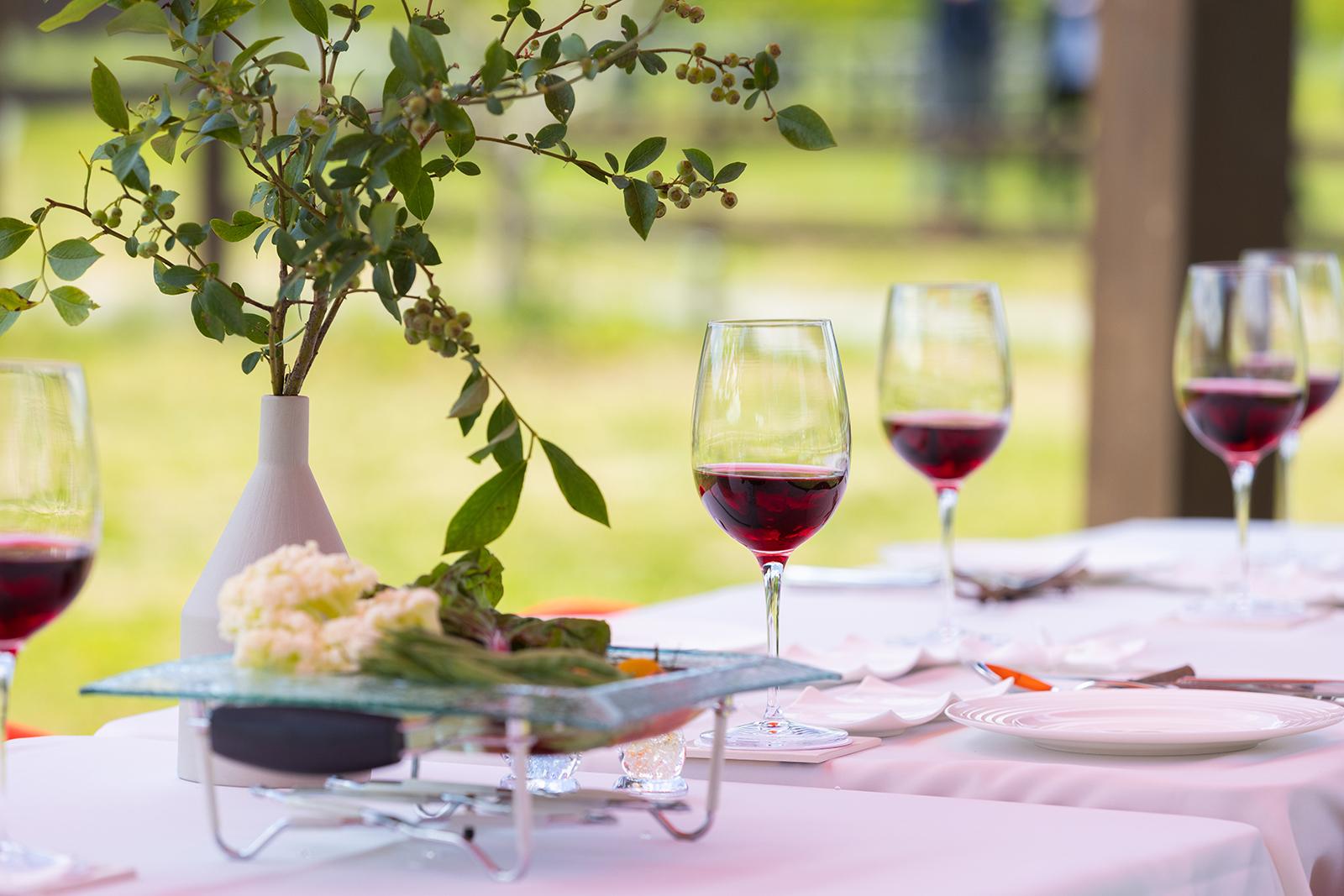 屋外で楽しむワインと食事